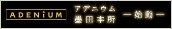 【(仮称)アデニウム本所プロジェクト】 墨田区本所に誕生する新築分譲マンション。