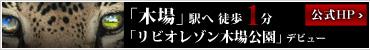 「リビオレゾン木場公園」デビュー<br>TOKYO、KIBAを向く<br>「木場」駅へ徒歩1分。